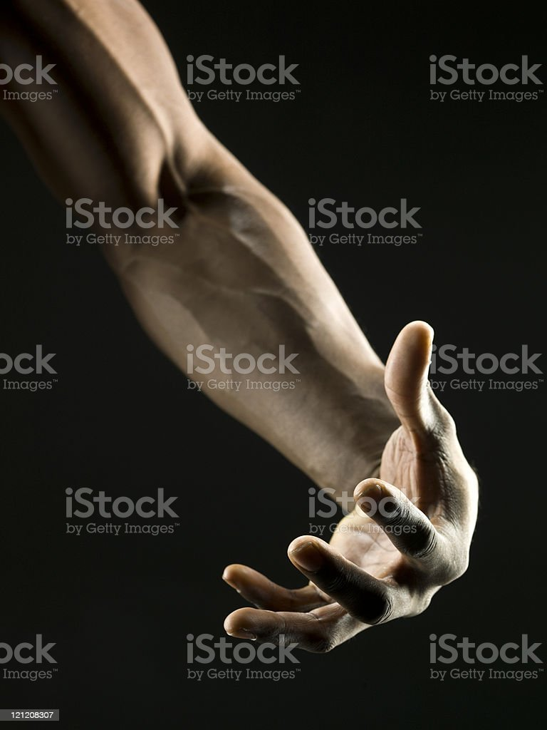 African American Man's Muscular Arm royalty-free stock photo