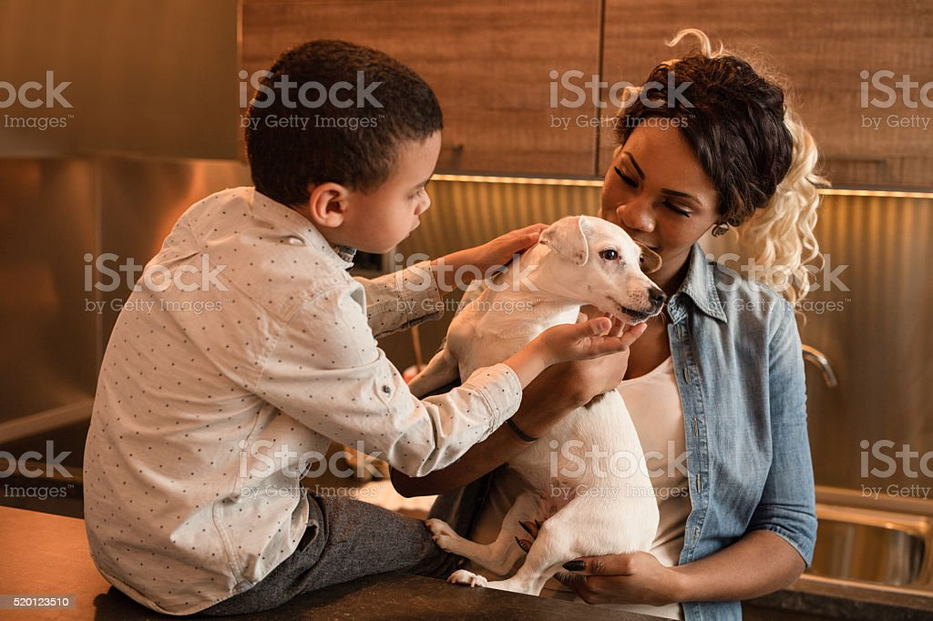African American son and mother with their dog at home. stock photo