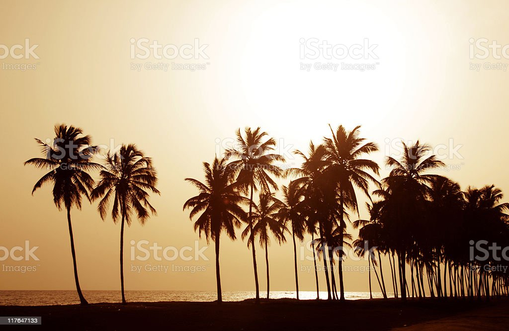 african beach royalty-free stock photo