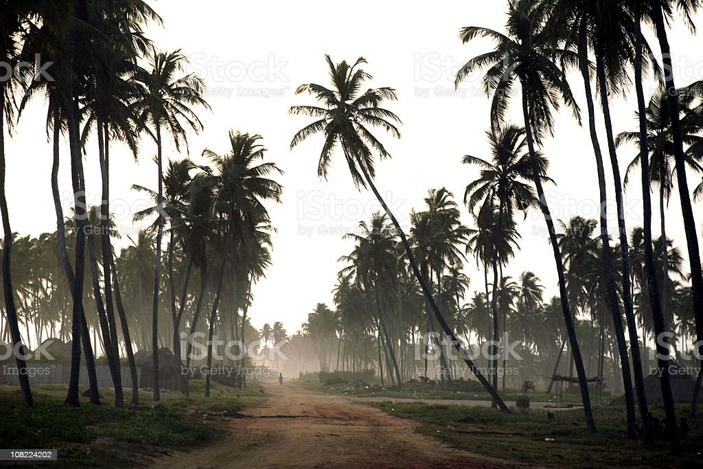 african beach road royalty-free stock photo
