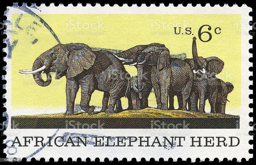 African Elephant Herd Stamp of 1970 stock photo