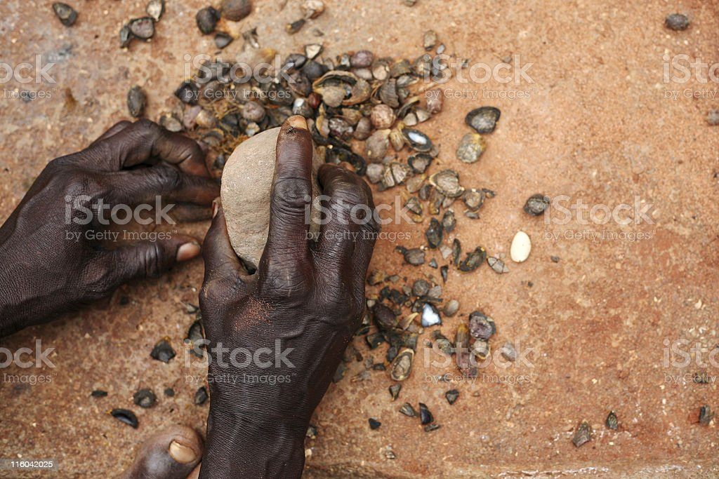 african food royalty-free stock photo