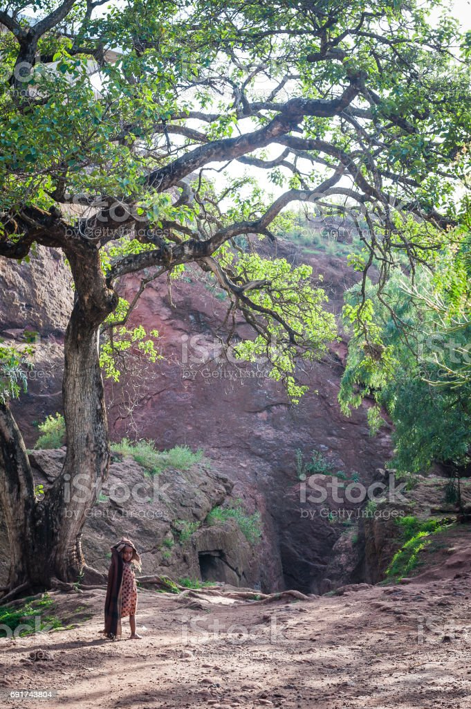 African Girl and Tree stock photo