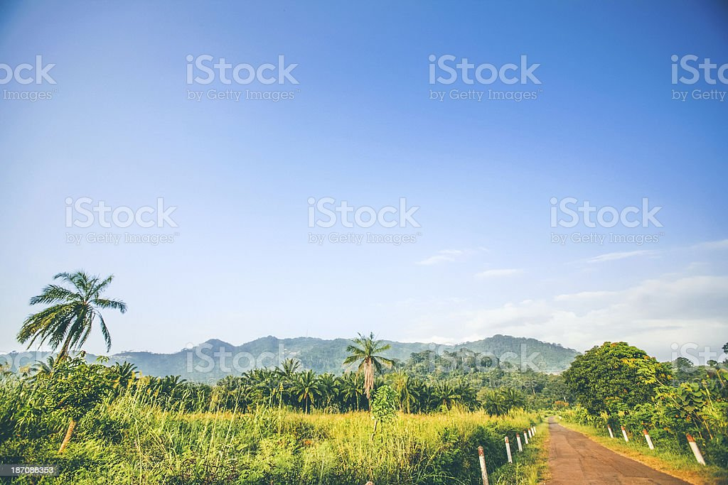 African jungle road. stock photo