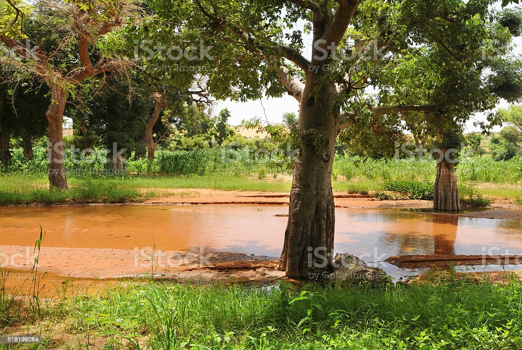 African landscape in Bandiagara, Mali stock photo