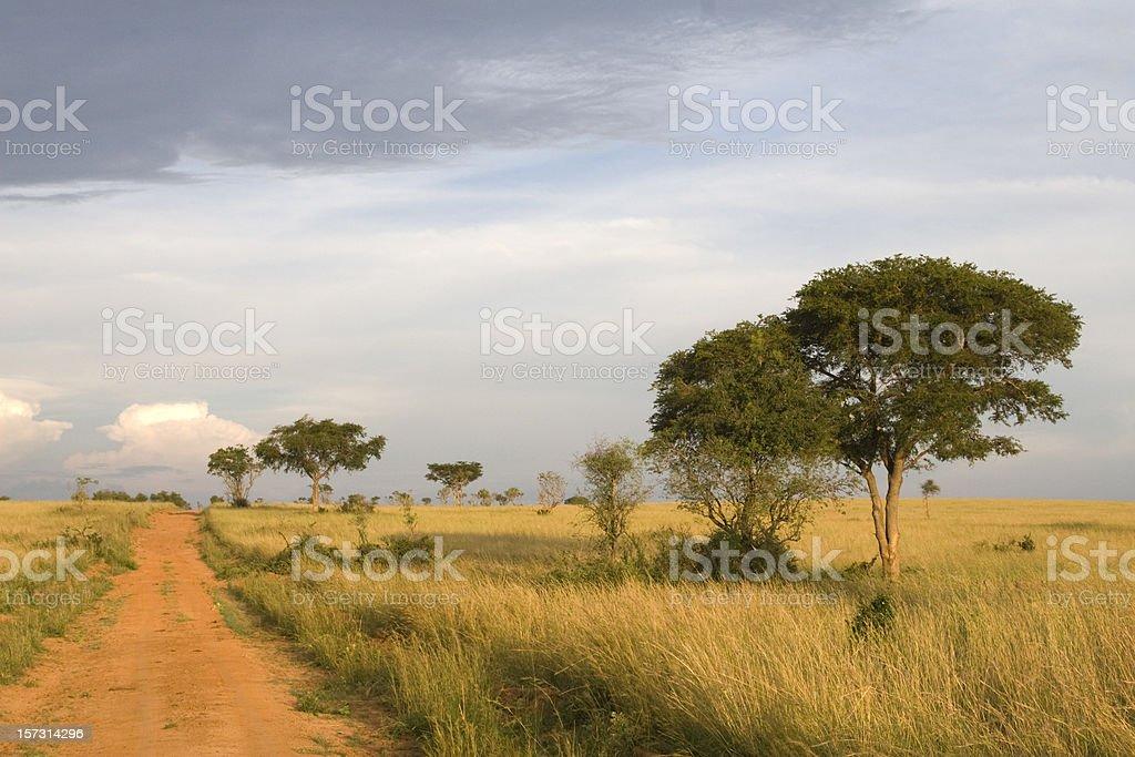African Landscape in Uganda stock photo