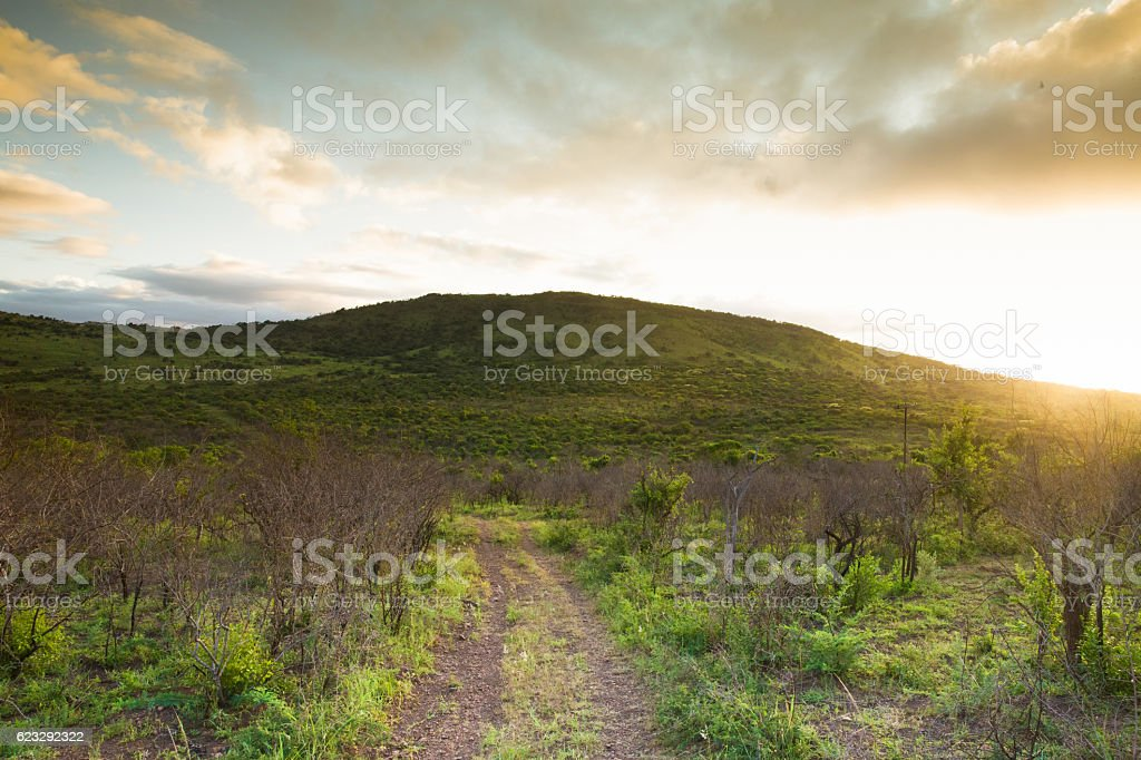 African Landscapes stock photo