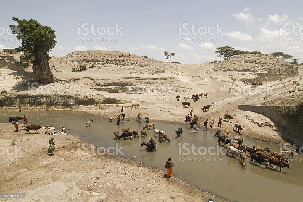African life at the river royalty-free stock photo