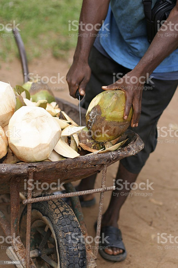 African Man Chopping Coconuts royalty-free stock photo