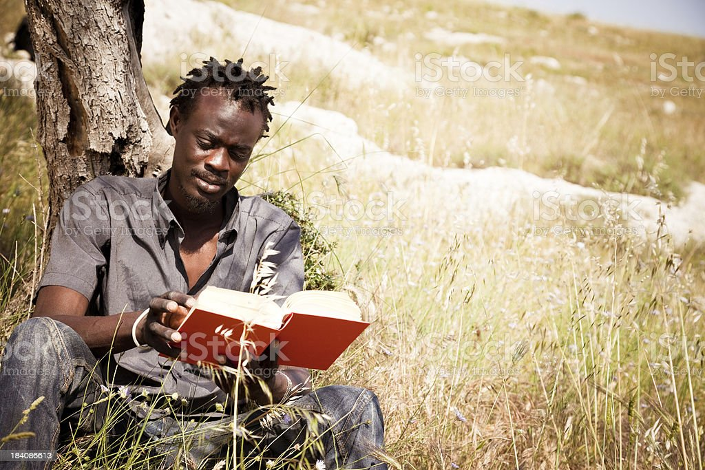 African Man In The Meadow royalty-free stock photo