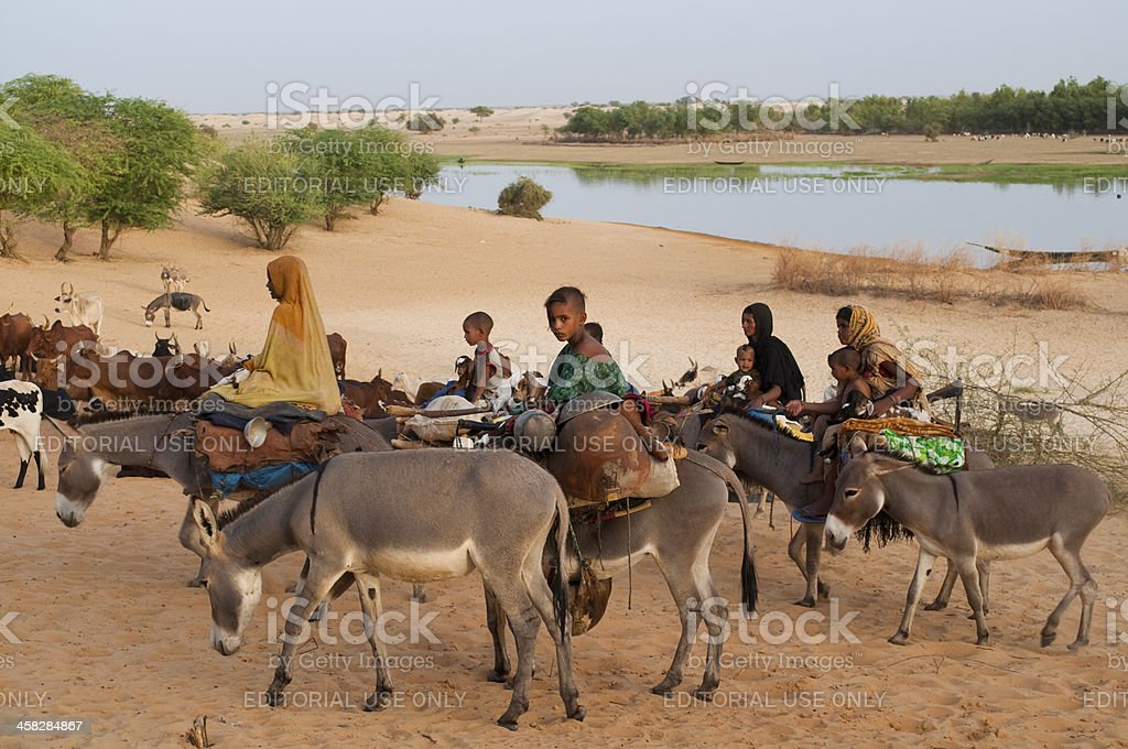 African nomads caravan marching in the desert of Mali. stock photo