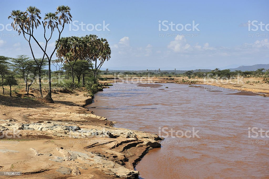 African river royalty-free stock photo