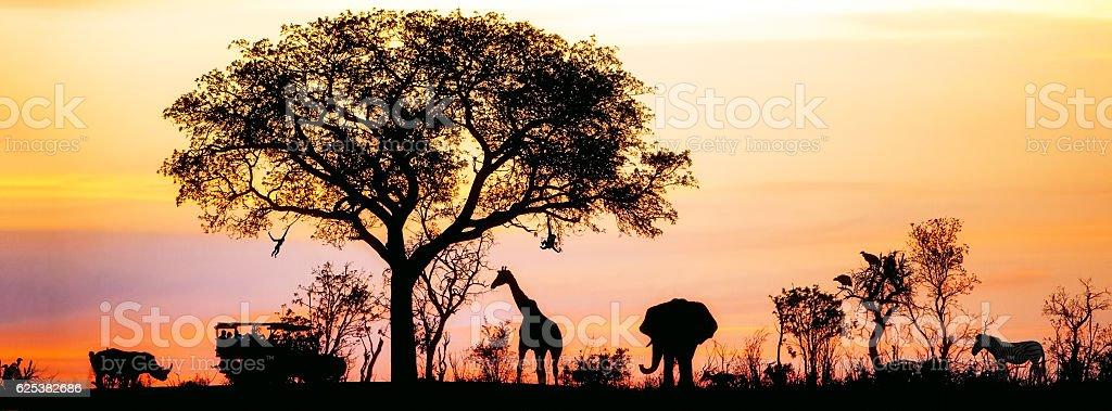African Safari Silhouette Banner stock photo