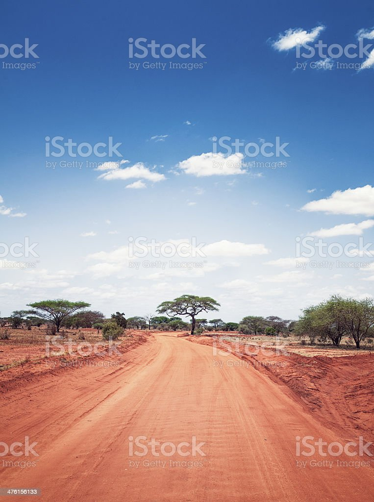 African Savanah Sky royalty-free stock photo