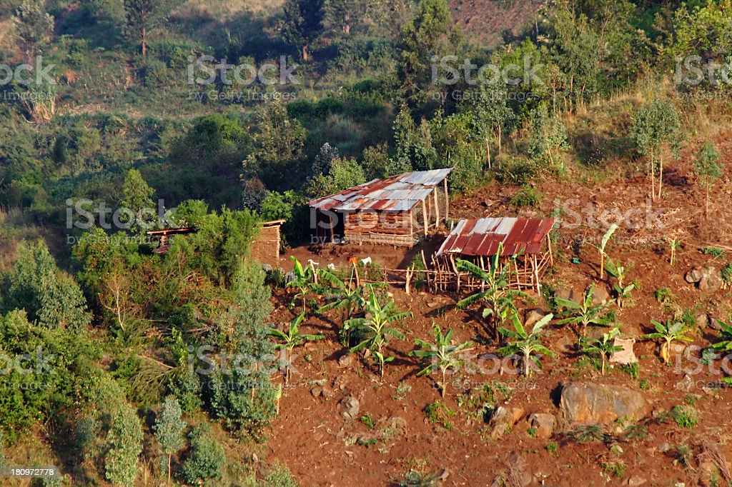 African Shanty Farm royalty-free stock photo