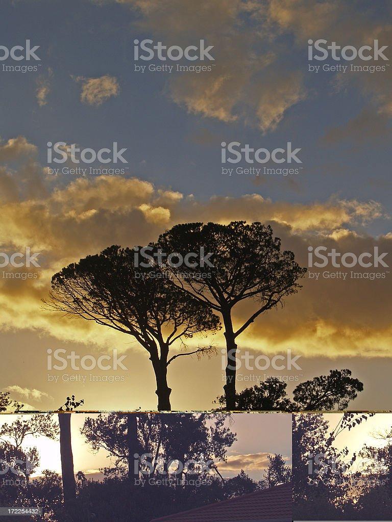 African Sunset. stock photo