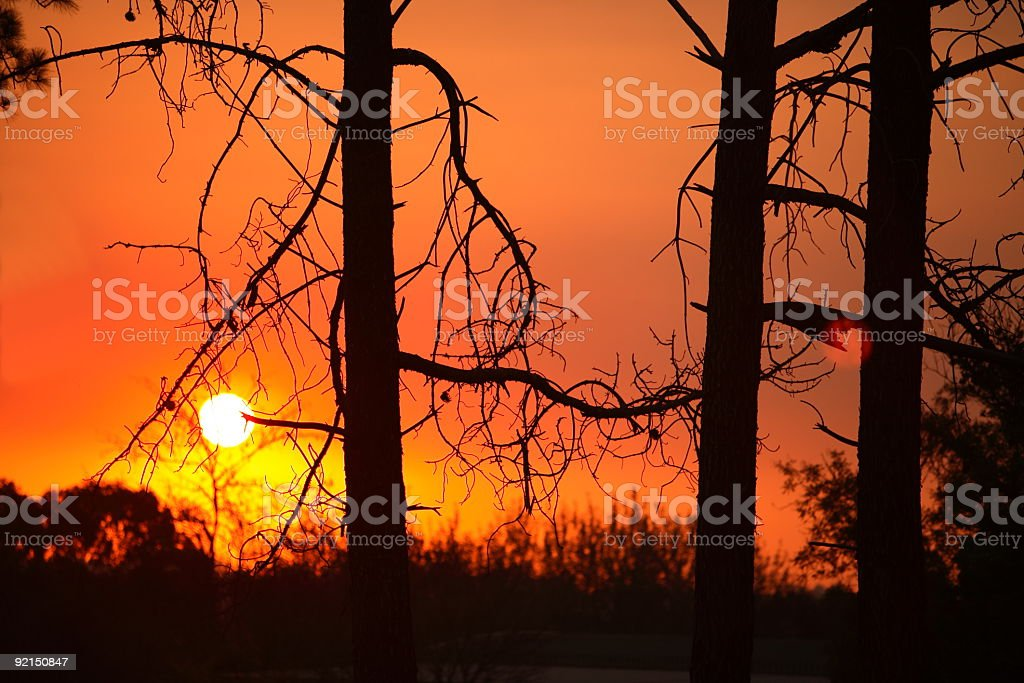 African Sunset royalty-free stock photo
