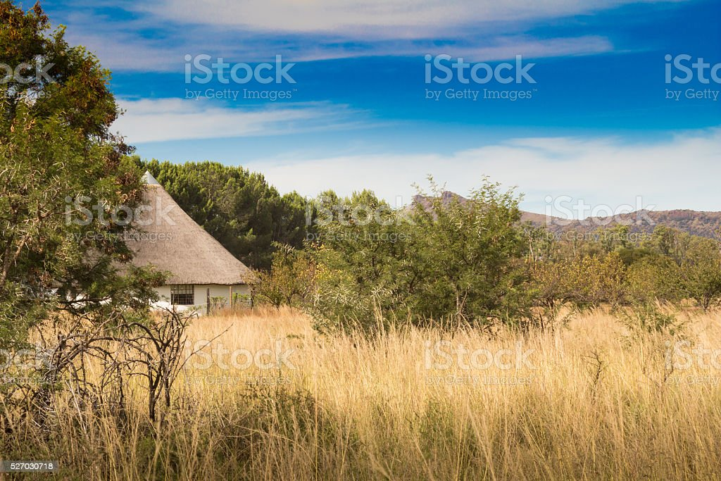 African thatched hut in the bush veld stock photo