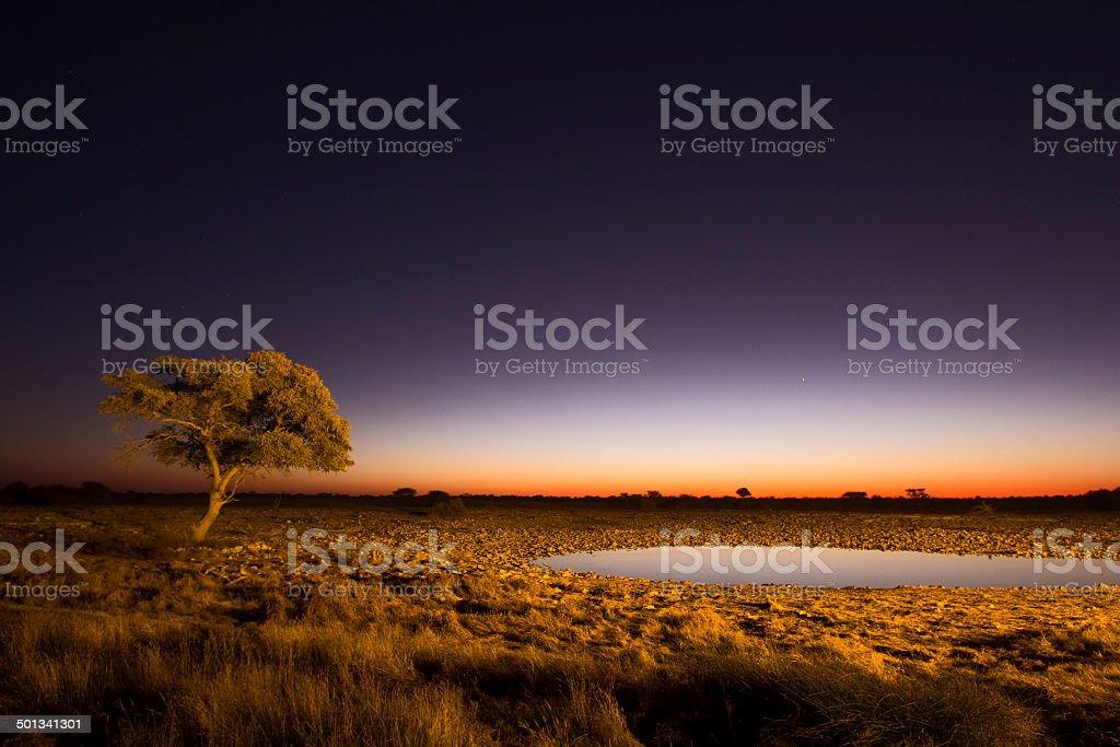 African Twilight stock photo