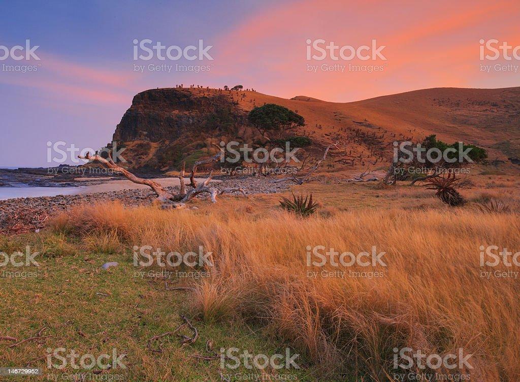 African wild coast scene stock photo