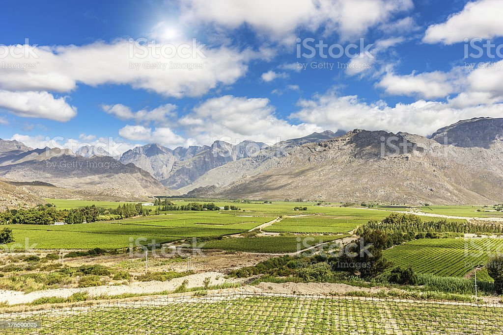 African Winelands Worcester Western Cape South Africa stock photo