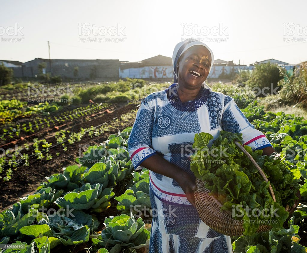 African woman laughing in vegetable garden stock photo