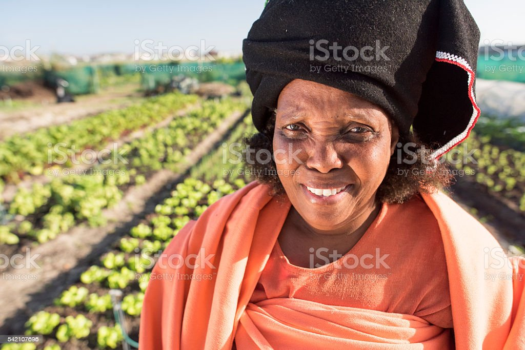 African Woman walking with harvest through garden stock photo