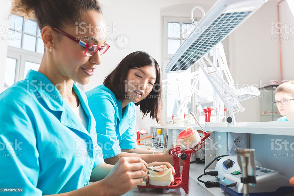 Afro american and asian female students learning prosthetic dentistry stock photo