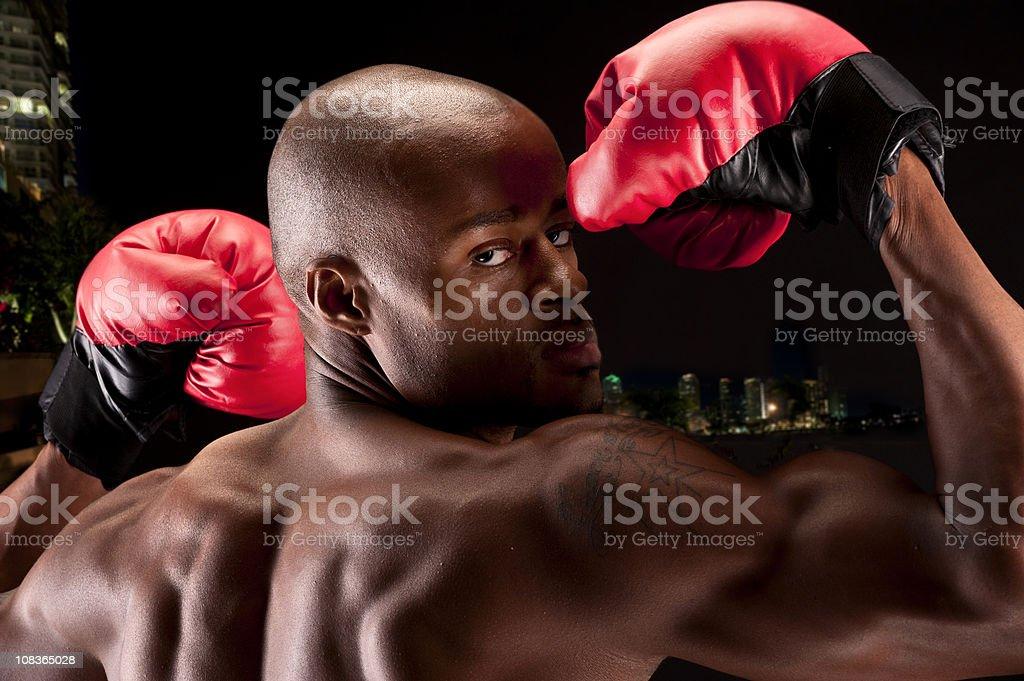 Afro caribbean boxer royalty-free stock photo