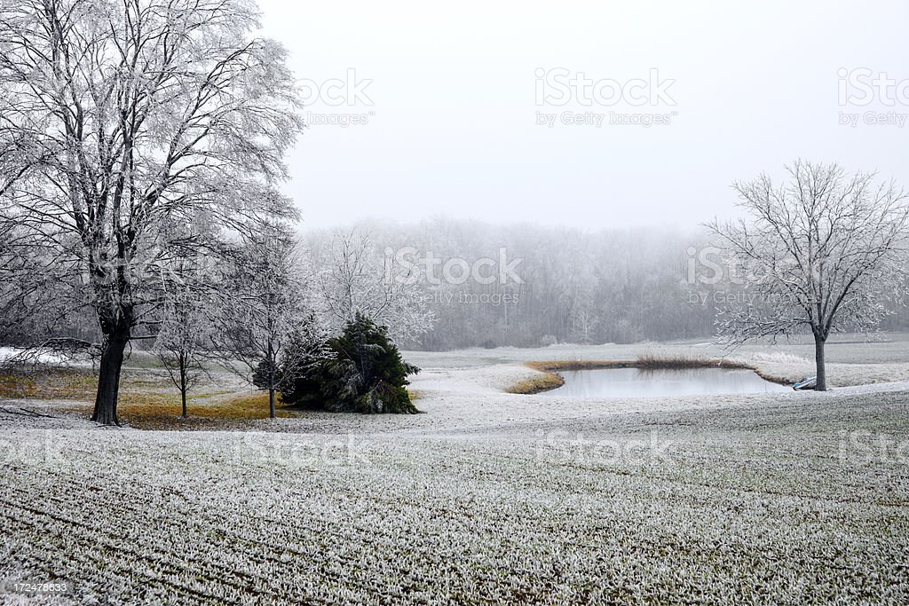 After a freezing rain storm. royalty-free stock photo