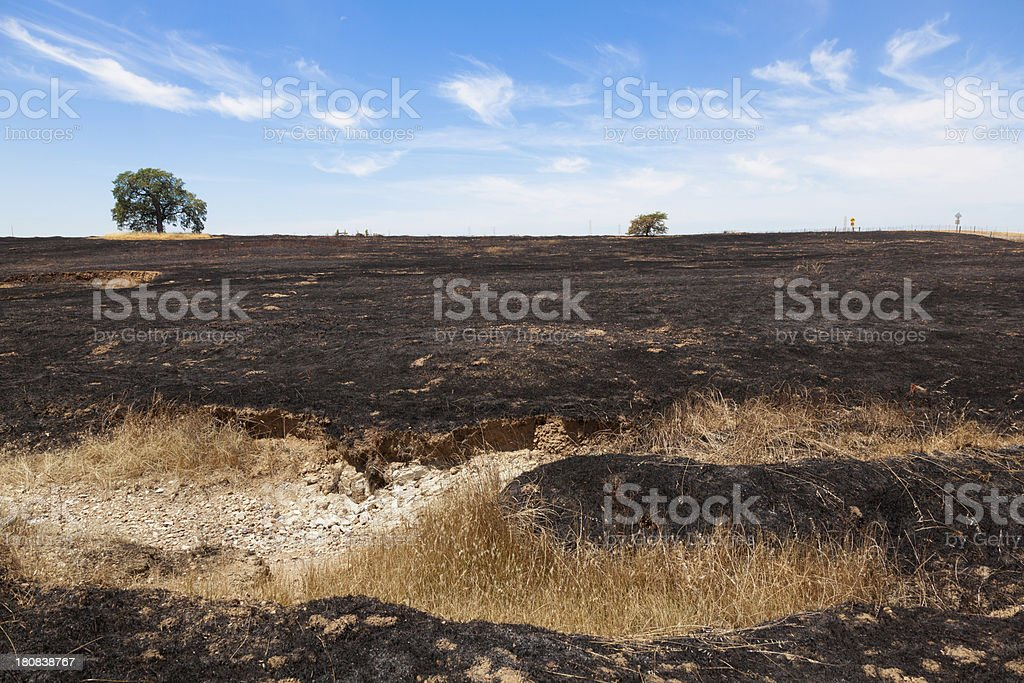 After Brush Fire royalty-free stock photo