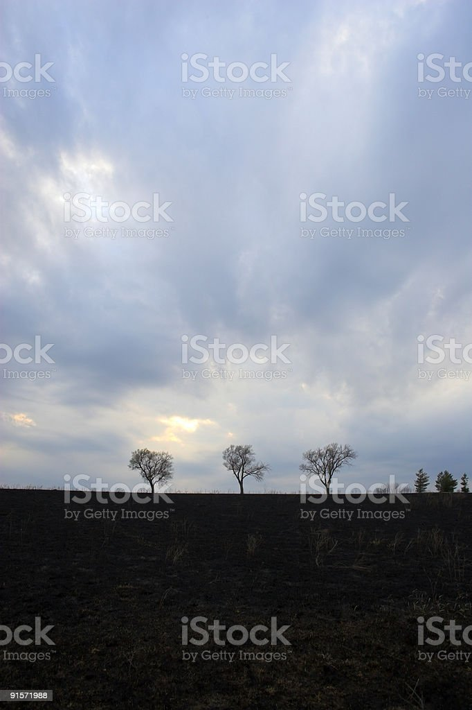 After prairie fire. royalty-free stock photo