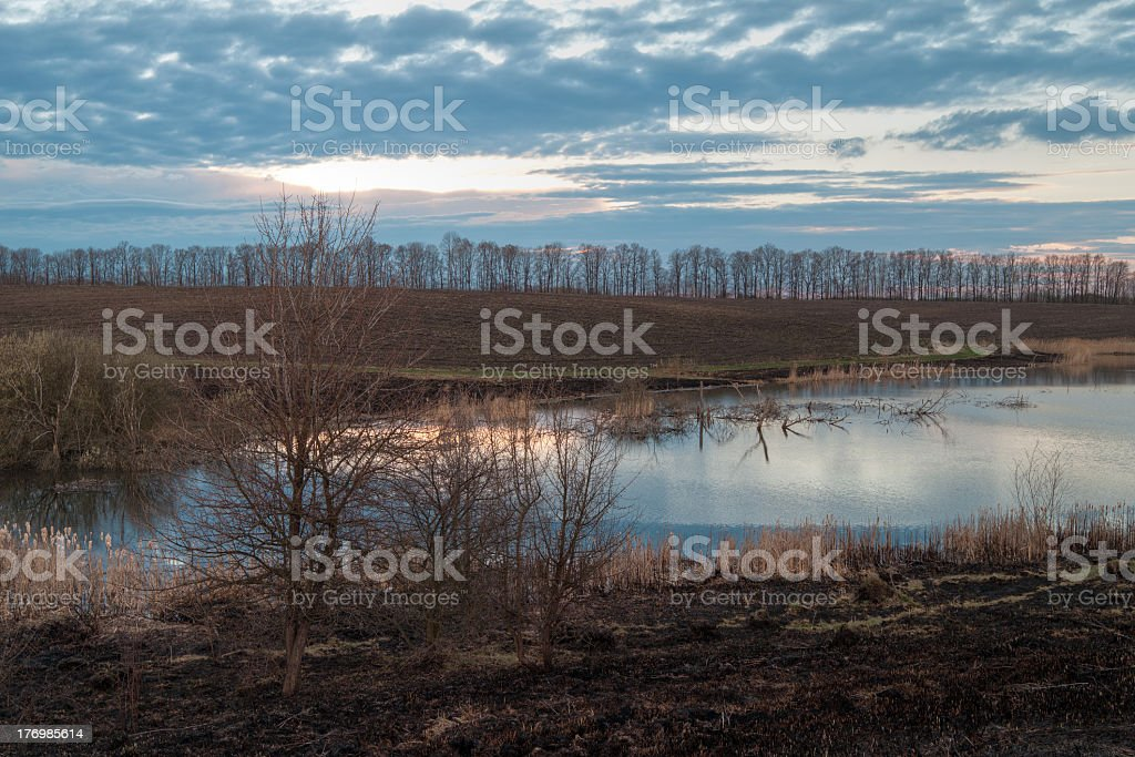 After the fire. Evening Landscape. royalty-free stock photo
