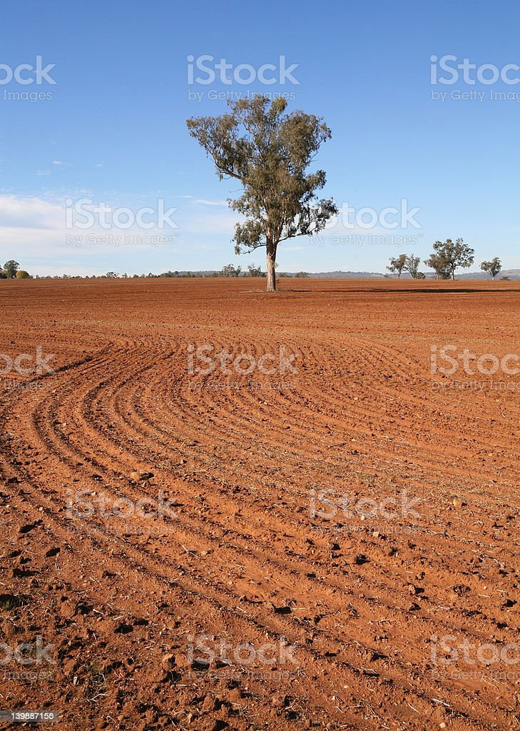 After The Harvest royalty-free stock photo