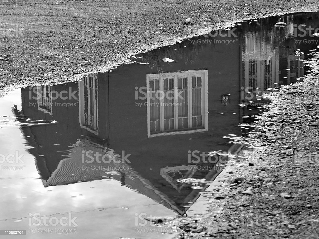 After the rainfall royalty-free stock photo