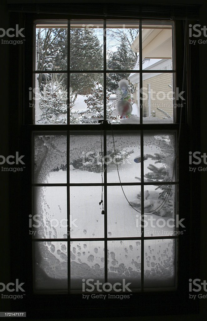 After the snowstorm royalty-free stock photo