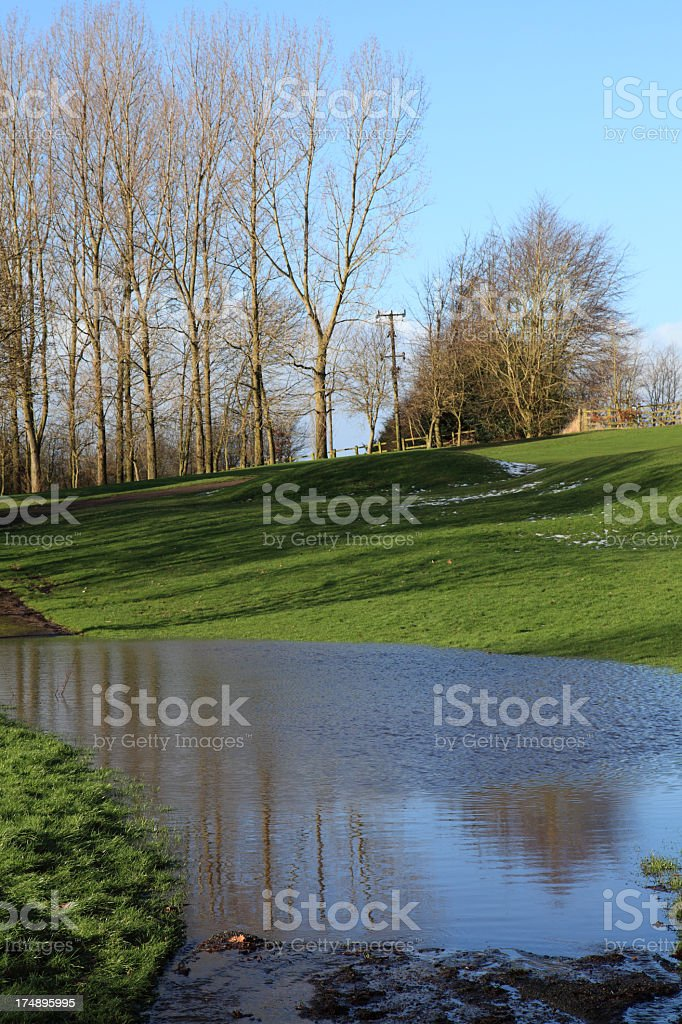 After the thaw royalty-free stock photo