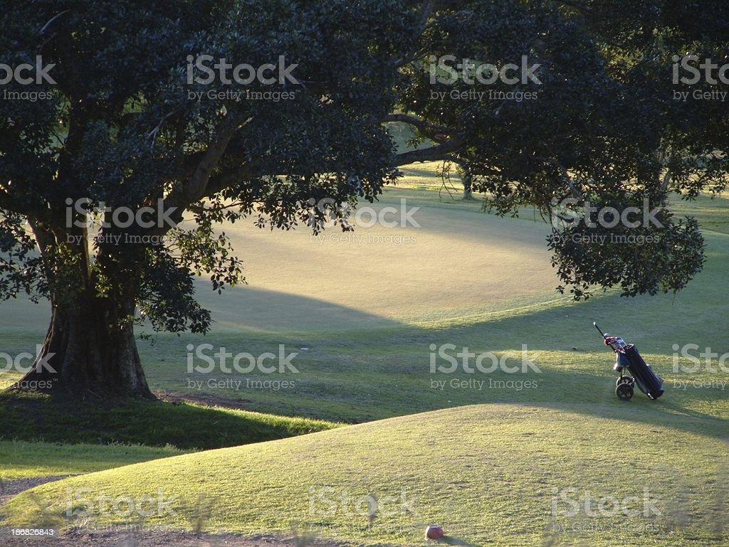 Afternoon Golf royalty-free stock photo