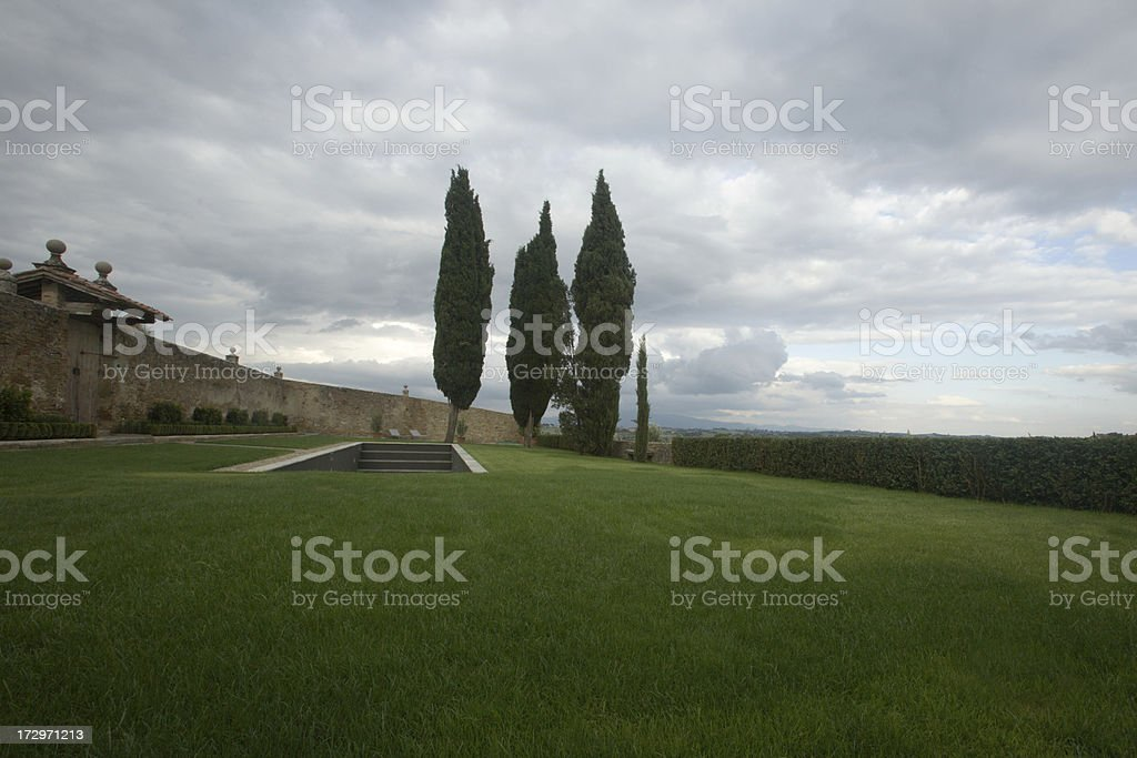 afternoon green grass scene in Tuscany royalty-free stock photo