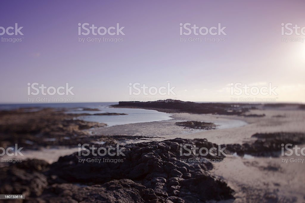 Afternoon Light by the Ocean stock photo