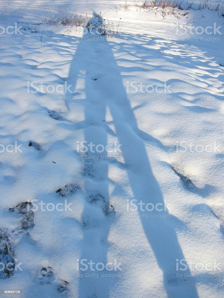 Afternoon shadow in the snow royalty-free stock photo