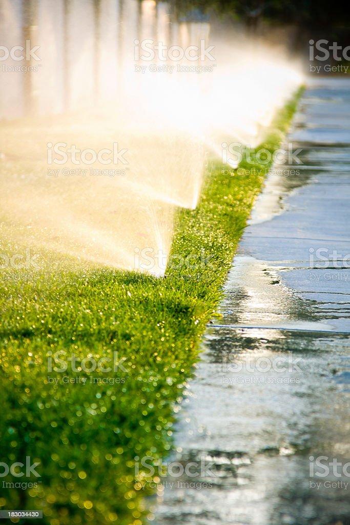 Afternoon Sprinklers stock photo