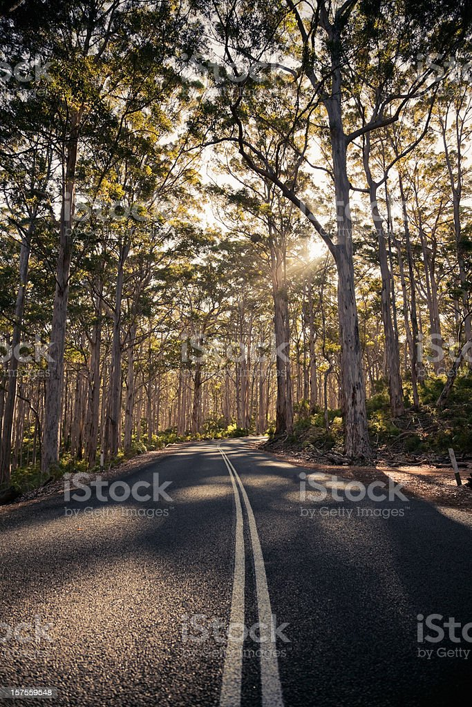 Afternoon Sun Lonely Road stock photo
