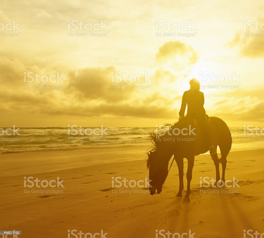 Against golden beach sunset, tired horse and female rider rest stock photo