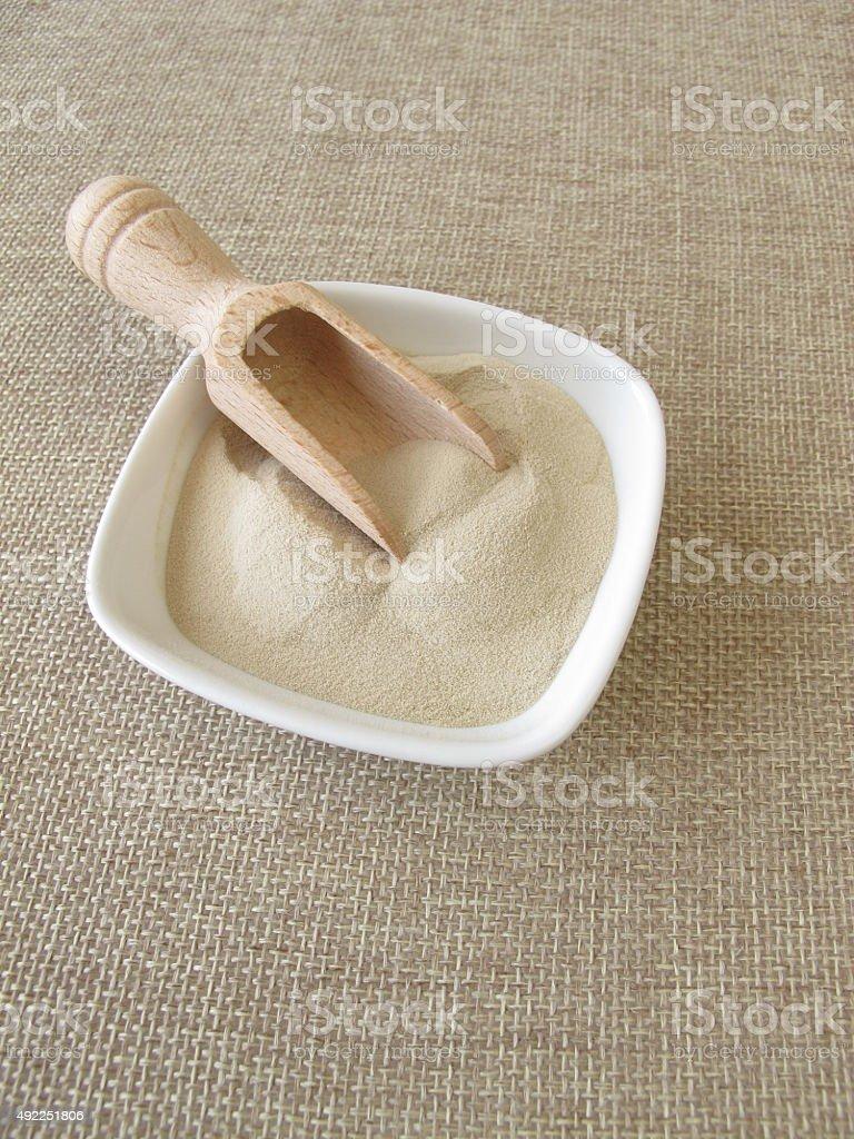 Agar-agar in powdered form stock photo