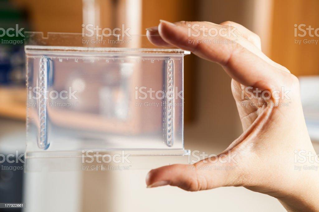 Agarose gel plate stock photo
