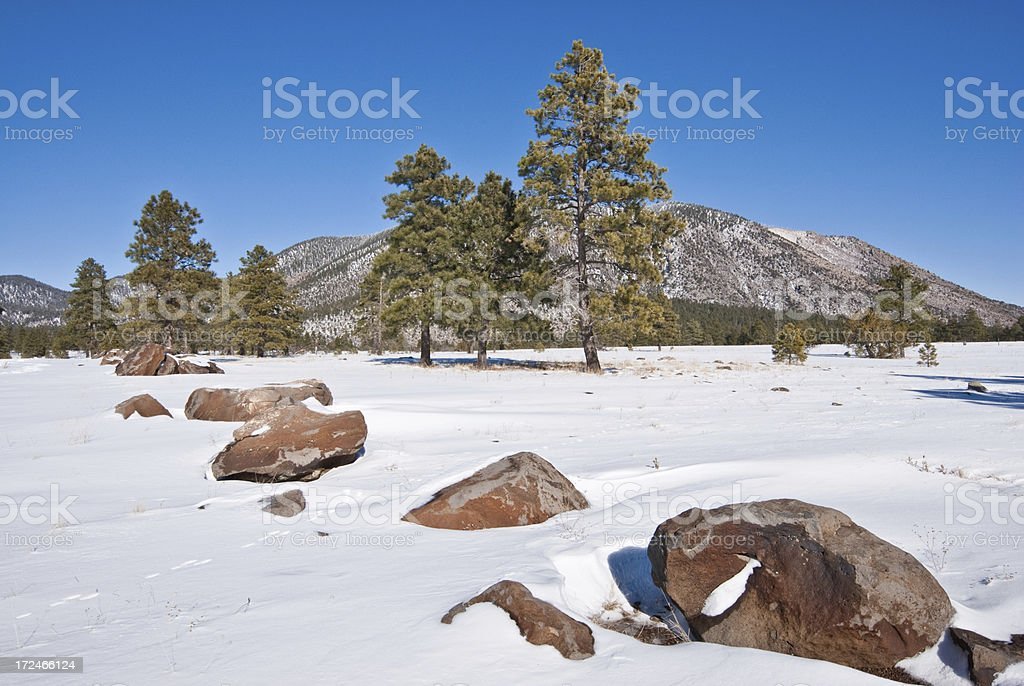 Agassiz Peak in the Winter royalty-free stock photo