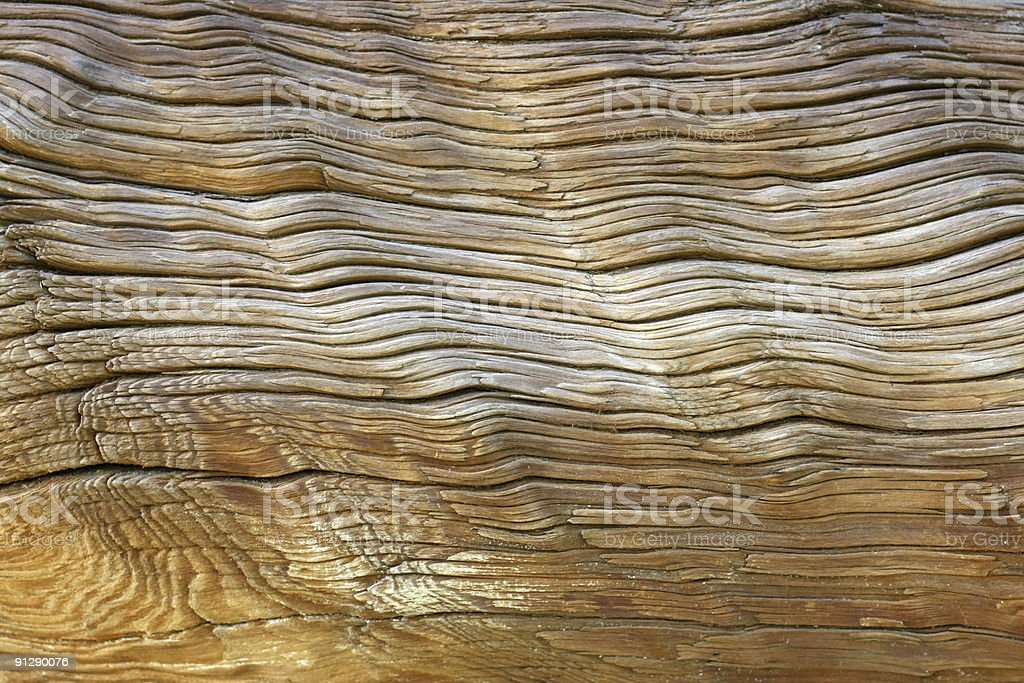 Age of Wood stock photo
