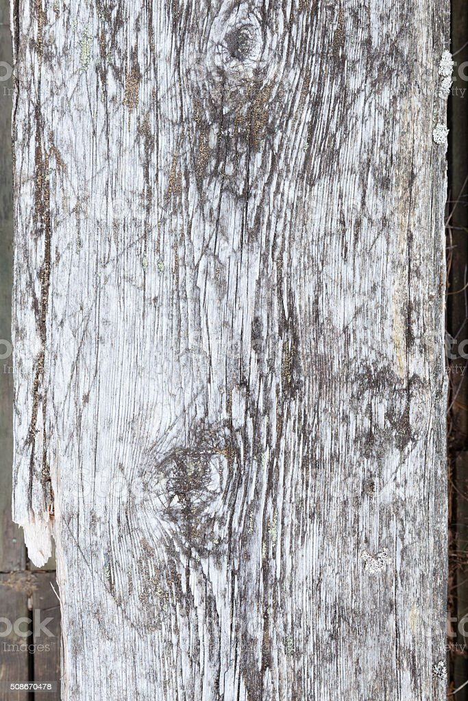 Aged natural gray wood background stock photo