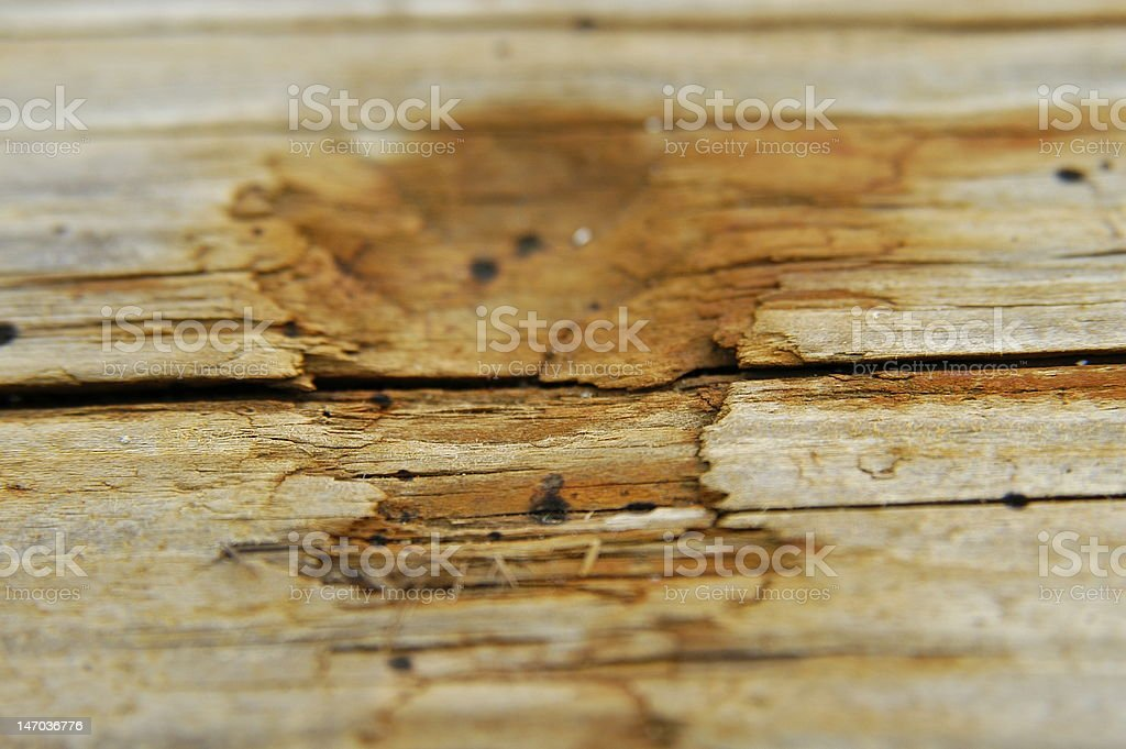 aged wooden panel boat sun cracked stock photo